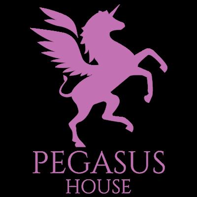 pegasus-coloured1